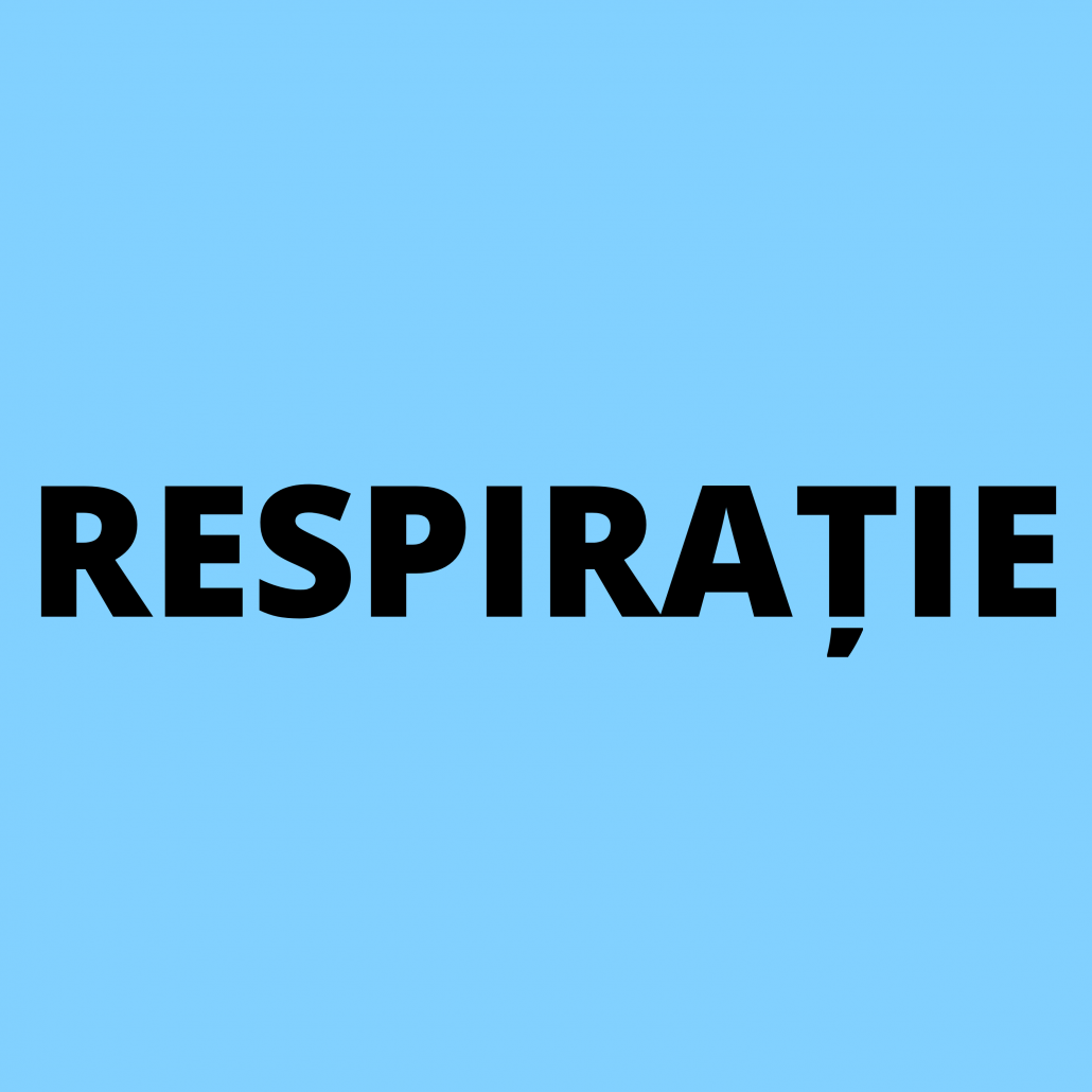 reteta amestec pentru sanatatea tractului respirator contra racelii si gripei arome
