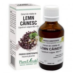extract gemoterapic de lemn cainesc plantextrakt earome