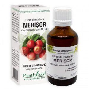 extract din mladite de merisor plantextrakt earome