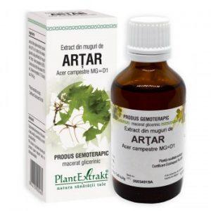 extract din muguri de artar extract gemoterapic plantextrakt earome