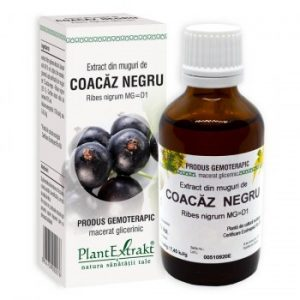 extract din muguri de coacaz negru plantextrakt earome