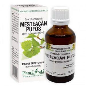 extract din muguri de mesteacan pufos plantextrakt earome