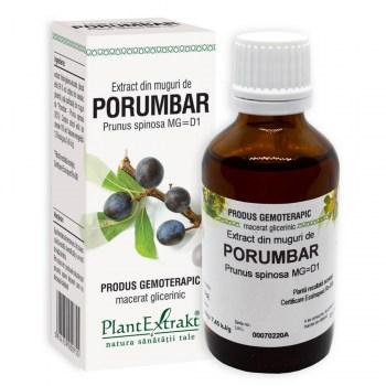 extract din muguri de porumbar plantextrakt earome