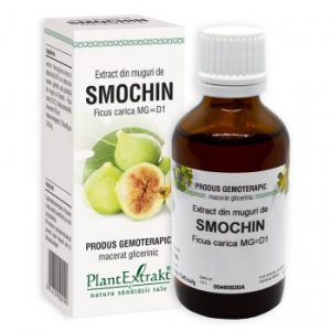 extract din muguri de smochin plantextrakt earome