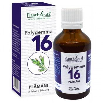 olygemma 16 plamani detoxifierea plantextrakt earome