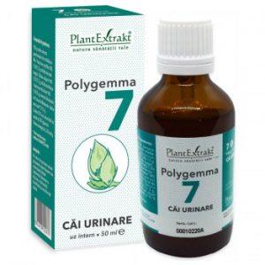 polygemma 7 cai urinare plantextrakt earome