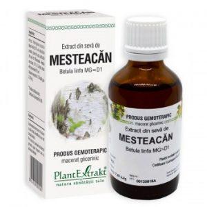 extract din seva de mesteacan plantextrakt earome